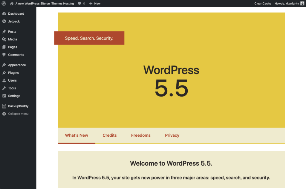 WordPress 5.5 update highlights